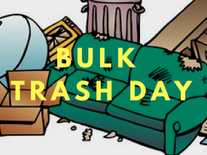 Bulk Trash Day